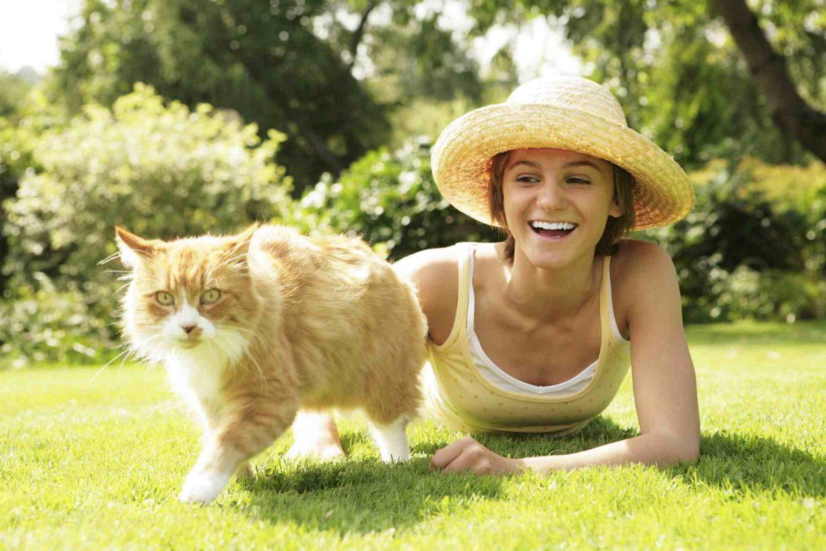 A quoi consiste une assurance pour les chats ?